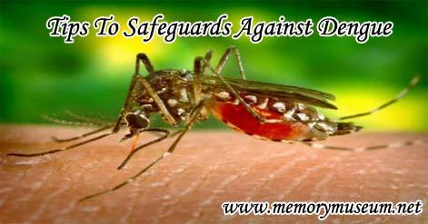 dengue-prevention-1